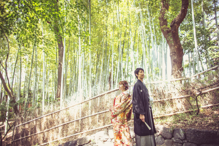 木漏れ日を感じる竹林にて